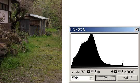 図1 暗い画像とそのヒストグラム