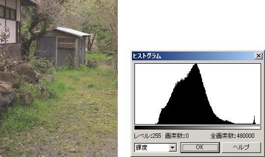 図2 丁度良い明るさの画像とそのヒストグラム