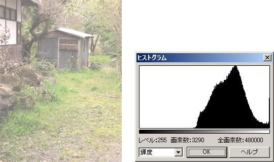 図3 明るい画像とそのヒストグラム