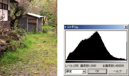 図4 コントラストが高い画像とそのヒストグラム