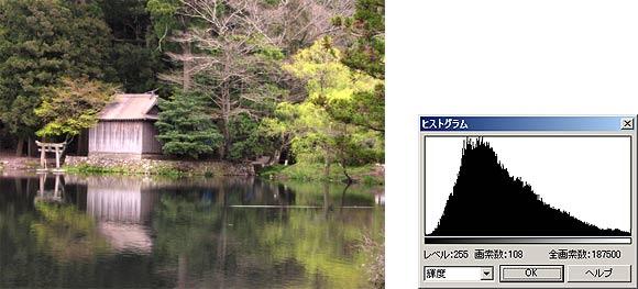 図12 コントラストを高くした画像とそのヒストグラム